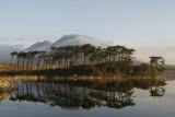 Ireland, a tour in Burren and Connemara