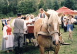 WEDDING CUSTOMS PICNIC
