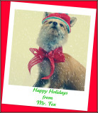 Happy Holidays From Mr Fox