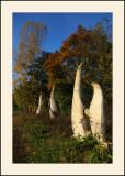 Les sculptures de la Dhuys