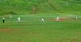 _DSC0553. 'Cricket Lovely Cricket ...'