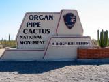 Organ Pipe Cactus Nat'l Mon, Arizona May 2007