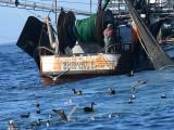 Shrimping boat, Coos Bay, Oregon