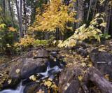 Bear River_7835.jpg