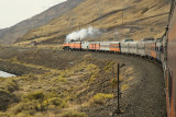 Entire Train