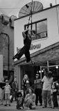 Toronto Aerial Dance Theatre
