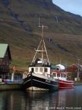 Vørðan FD 954