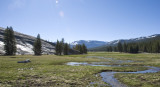 Tuolumne Meadow-00.jpg