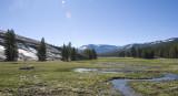 Tuolumne Meadow-00.jpg