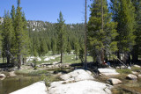 Tuolumne Meadow-03.jpg