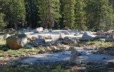 Tuolumne Meadow-05.jpg