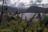 Parc national Gros Morne - Western Brook Pond pict3567.jpg