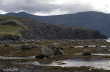 Parc national Gros Morne - Rocky Harbour Les berges pict3665.jpg