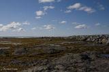 Parc national Gros Morne - Rocky Harbour Les berges pict3666.jpg