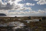 Parc national Gros Morne - Rocky Harbour Les berges pict3667.jpg