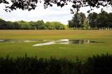 Evidence of English rain.jpg