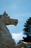 Pegasus detail