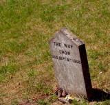 Pet Cemetery 3