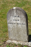 Pet Cemetery 4