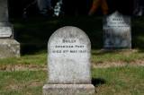 Pet Cemetery 7