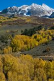 Fall Colors - McClure Pass, Ridgway Area, Kebler Pass