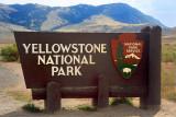 Yellowstone National Park, 2009