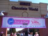 York Tour de Pink Banner