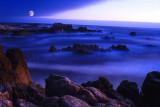 Asilomar Cove