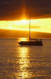 Golden Hawaii