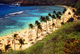 Oahu Cove