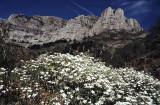 Mount Corchia