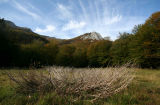 Fociomboli's alpine marsh