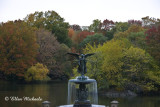 Bethesda Fountain Fall Foliage
