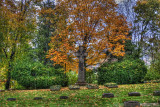 Cleveland's Lakeview Cemetery in HDR