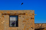 Raven Over Home, Acoma Pueblo, New Mexico