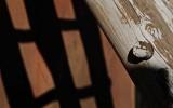 Kiva Ladder and its Shadow, Acoma Pueblo