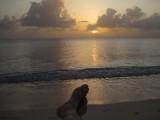 Jordao Ihas Cayman Junho 2009