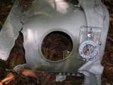 P-51 Mustang Crash Site - Beartown Wilderness Area, Virginia