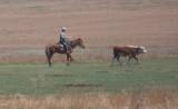 Sibirian cowboy