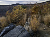 Early AM in Shenandoah National Park, Virginia