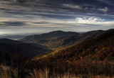 Early AM in Shenandoah National Park