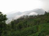 Nepal_019.JPG