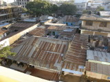 Corrugated iron roofs
