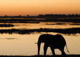 Linda's Southern Africa