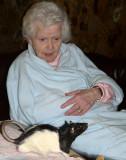 Pet Therapy Visit Gallery