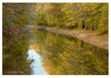 Magic of Autumn Along the Canal