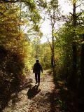 Afternoon hike