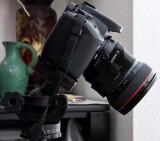 Canon TS-E 24mm F/3.5 L with smallest Canon body