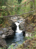 Lower Little Qualicum Falls 1.jpg