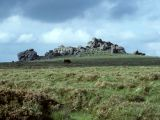 Hound Tor - Dartmoor near Widecombe.jpg